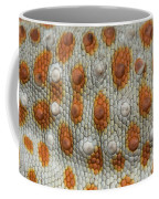 A Tokay Gecko Gekko Gecko At The Sunset Coffee Mug by Joel Sartore