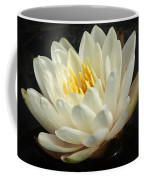 A Touch Of Elegance On The Pond Coffee Mug