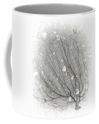 A Tree On The Beach #2 - Seaweed And Shells Coffee Mug