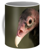 A Turkey Vulture At The Henry Doorly Coffee Mug