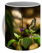 A  View Of A Butterfly Coffee Mug