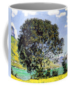 A View Of Lake Brienz From Bodeli Coffee Mug