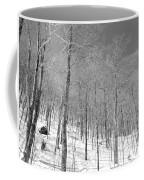 A View Through The Woods Coffee Mug
