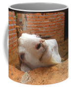 A Visit With A Smiling Goat Coffee Mug