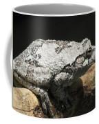 A Visitor Coffee Mug