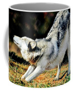 A Warm Stretch Coffee Mug