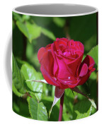 A Watered Rose  Coffee Mug