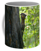 A Well Balanced Meal Coffee Mug