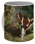 A Welsh Springer Spaniel Holds A Dead Coffee Mug by Walter A. Weber