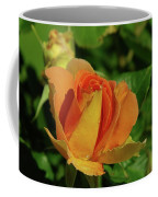 A Wet Rose  Coffee Mug