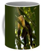 A White-throated Capuchin Monkey Coffee Mug by Roy Toft