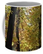 A Window To Fall Coffee Mug