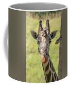 A Wink Coffee Mug