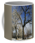 A Winter Kiss Coffee Mug
