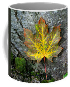 A Work Of Nature's Art Coffee Mug