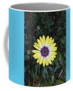 A Yellow Daisy Exhibit Coffee Mug