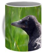 A Young Crow Coffee Mug