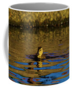 A Young Duckling Coffee Mug