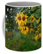 A Bit Ragged, Their Yellow Glory Coffee Mug