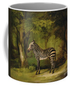 A Zebra Coffee Mug by George Stubbs