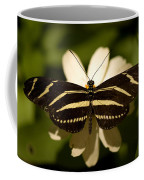 A Zebra-winged Butterfly At The Lincoln Coffee Mug by Joel Sartore