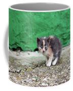 Abandoned Kitten On The Street Coffee Mug