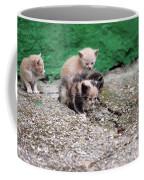 Abandoned Kittens On The Street Coffee Mug