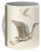 Above A Flying Crane And Beneath A Flying Pelican, Anonymous, 1688 - 1698 Coffee Mug
