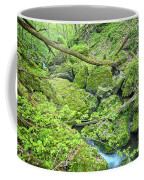 Above Moine Creek Coffee Mug