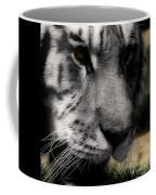 Absolute  Coffee Mug