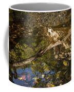 Abstract Autumn Reflection Coffee Mug