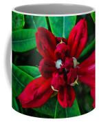 Abstract Rhoddy Bloom Coffee Mug