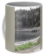 Acadia Bridge Coffee Mug