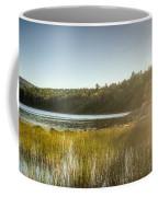 Acadia National Park Shoreline In Evening Sun Coffee Mug