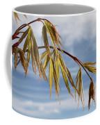 Acer Coffee Mug