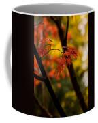Acer Silhouette Coffee Mug