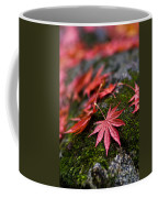 Acers Fallen Coffee Mug