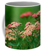 Achillae's Heel Coffee Mug