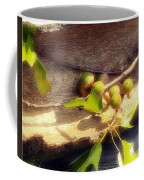 Acorn Shelter Coffee Mug