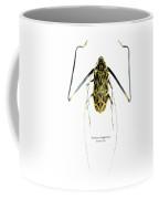 Acrocinus II Coffee Mug