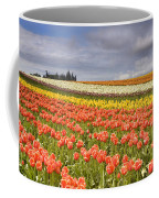 Across Colorful Fields Coffee Mug