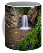 Adams Canyon Lower Falls Spring Coffee Mug