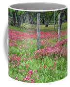 Adding A Splash Of Color-indian Paintbrush In Texas Coffee Mug