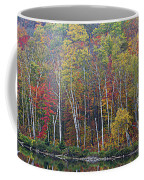 Adirondack Birch Foliage Coffee Mug