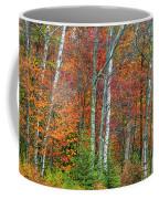 Adirondack Birches In Autumn Coffee Mug