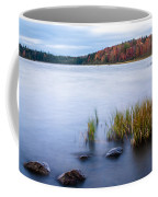 Adirondack View 4 Coffee Mug