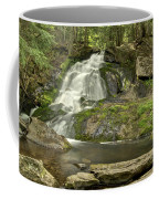 Adler Falls Coffee Mug
