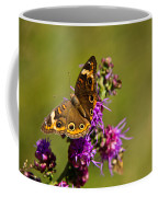 Admiral Butterfly  Coffee Mug