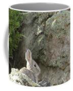Adobetown Bunny Coffee Mug