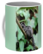 Adorable Black Goeldi's Marmoset Coffee Mug